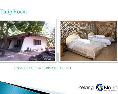 Pulau Pelangi Resort - Tulip Room Bungalow