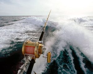 Travelserucom - Speedboat Mancing