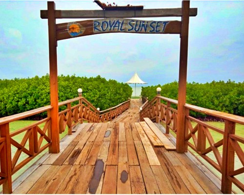 Pulau Royal Tour - Mangrove Bridge